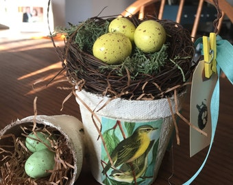 Peat pot Spring Easter themed arrangement with nest and eggs