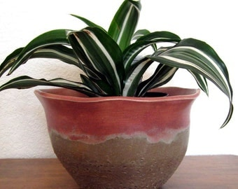 Ceramic Planter- Large Planter - Garden Pot - Stoneware -  Cactus Flower - Hand Thrown Pottery - Ready to Ship