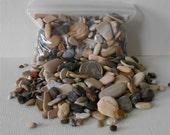 Pebble Art~Miniature Sand Stones~Decorative Rock~Fairy Garden Pathway~Terrarium~Floral Supply Rocks~Miniature Garden~Vase Filler~Dish Garden