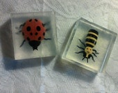 Lady Bug soap..Big Lady Bug in a Big soap.....Big Bee in a Big soap.... Nature Center Party favor...Finger Puppet in a soap.....