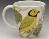 Porcelain Teacup with Carved Hooded Warblers