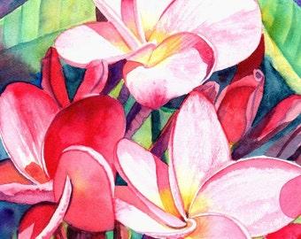 Original Watercolors, Plumeria Paintings,  Tropical Flower Paintings, Frangipani Art, Kauai Fine Art, Hawaiian Original Wall Decor, Hawaii