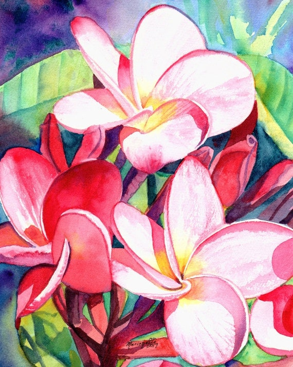 Original Watercolors Plumeria Paintings Tropical Flower