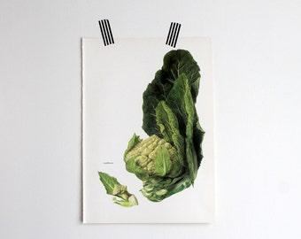 Vintage Print  - Cauliflower - Book Plate  - 1965 - Gallery Wall - Unframed Bookplate Art - Vegetables Botanical White Green Garden