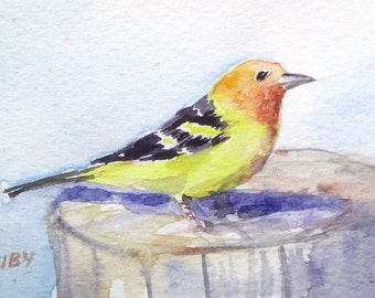 original watercolor painting ACEO western tanager  ,2.5x3.5 inches