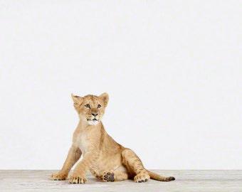 Animal Nursery Art Print. Lion Cub. Animal Nursery Decor. Baby Animal Photo.