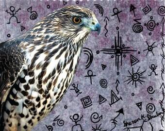 Tribal Art, Hawk and Symbols, Native American Totem Animal, Southwestern Bird, Mixed Media, Home Decor, Wall Hanging, Giclee Print, 8 x 8