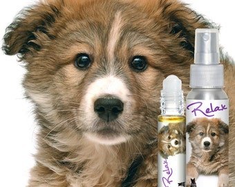 Mixed Breed RELAX Aromatherapy Takes the Edge Off Stress & Anxiety in Dogs Calming Essential Oils for Fear of Thunderstorms Fireworks