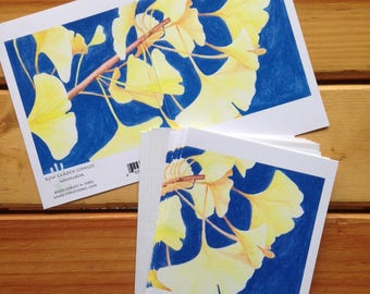 6 blank cards - Kew Garden Ginkgos