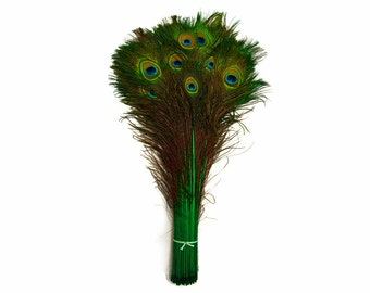 "Peacock Feathers, 100 Pieces - 30-35"" Kelly Green Dyed Over Natural Peacock Tail Eye Wholesale Feathers (Bulk) : 4208"