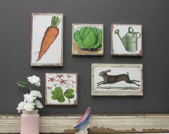 "home decor - a 5 piece wall collage - ""Garden Romp ""- colorful flair"