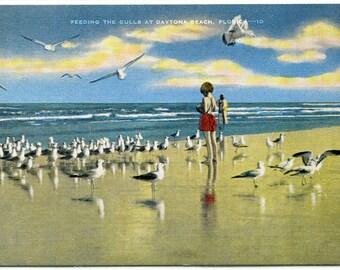 Girl Feeding Seagulls Beach Scene Daytona Florida linen postcard