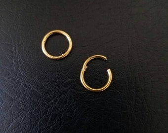 """16g 18g 5/16"""" Small Gold Titanium anodized 316L Steel Seamless Segment Hinged Ring Hoop body jewelry eyebrow septum nose smiley helix lip"""