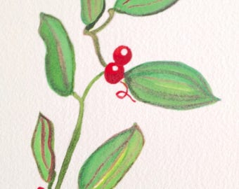 ORIGINAL watercolor painting, catbrier native beach plant, red and green cat briar beach art, matted 8x10