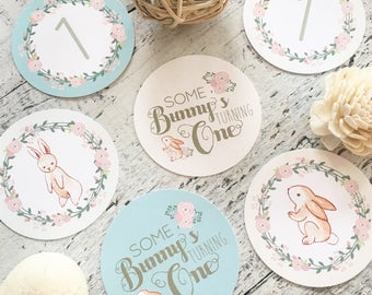 Bunny Party Circles 2 & 3 INCH - Floral Bunny - SomeBUNNY is One by Beth Kruse Custom Creations - click on item details - INSTANT DOWNLOAD