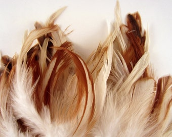 50 Feathers assorted Natural Mix 3 to 5 inches craft feathers schlappen mix