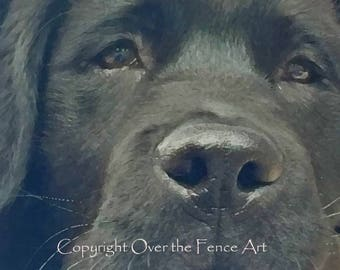 Black Labrador Puppy Eyes Fine Art Photo Greeting Card Black Lab Card