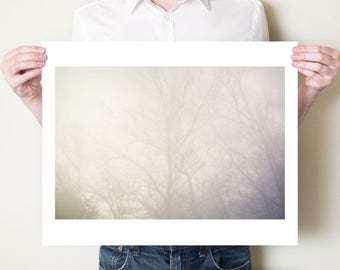 Winter trees photography artwork, ethereal fine art photograph. Serene misty woodland neutral decor. Print sizes 5x7, 8x10, 11x14, 16x20