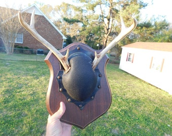 Vintage Deer Rack of Horns Antlers Mounted on a Plaque Could Be Repurposed     BB