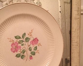 2 adorable dinner plates farmhouse charmand floral