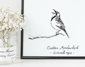Meadowlark Bird Print | 8...