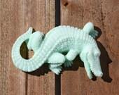 Alligator Soap