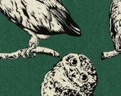 Country House - Owls Teal CANVAS from Cosmo Textiles