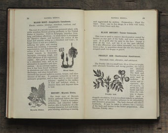 Antique book herbalists gift Botanic Guide by William Fox 1900s book