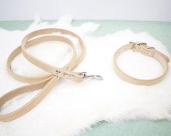 Small Leather Dog Collar and Leash Set - Plain Jane