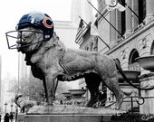 Chicago Bears Lion at Art Institute of Chicago - Football Home Decor Wall Art Architecture City Michigan Avenue Street Photography Print