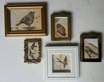 A Collection Of Five Original Mini Drawings On Collage Of British GardenBirds Framed In Vintage Frames.