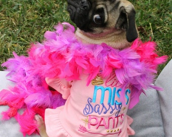 little miss sassy pants dog birthday shirt, girl dog clothes, dog lover gift, small dog clothes, medium dog clothes, extra large dog clothes