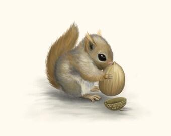 Squirrel Greetings Card Blank Inside