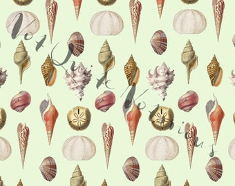 Seashells With Green Background Digital Paper - Instant Download