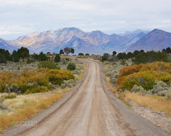 Mountain landscape, wall art, mountain photography, office decor, Colorado picture, fine art photograph - West Elk Wilderness
