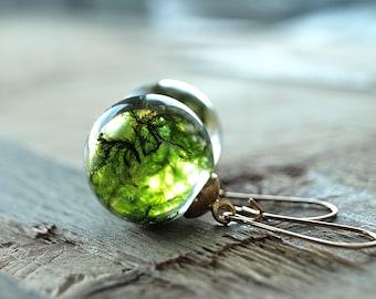 Moss earrings,Real moss sphere earrings,Resin  sphere earrings,Green earrings,real Moss Terrarium earrings,Moss jewelry,resin moss earrings,