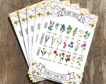 5 Postcard Pack - Plant These to Help Save Bees / save the bees / pollinator preservation / environmental awareness