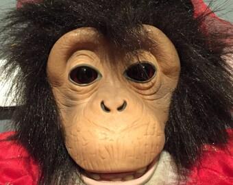 Mona The Haunted Spirit Chimp,Will Melt Your Heart