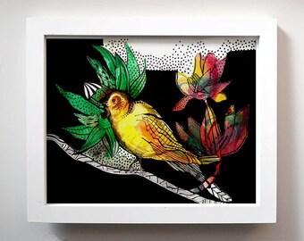 One little bird fine art print