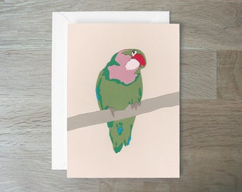 SALE - Rosy-Faced Lovebird - Greeting Card - Papercut - Lovebird Card