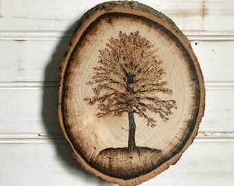 Live Edge Single Tree Woodburning // Medium // Wall Hanging