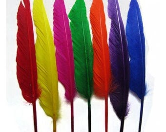 25 Colourful Duck Pointer Feathers .  UK Supplier