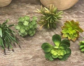 6 pc Assortment of Faux/Permanent Succulents