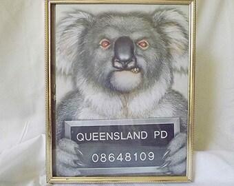 Framed Koala Bear Mug Shot Most Wanted Queensland Police Scary Koala Bear Funny Koala Bear Mean Koala Bear Koala Collectible Art