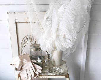A collection of beautiful vintage white flapper girl ostrich feather accessories