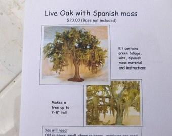 KIT:  Live Oak with Spanish Moss