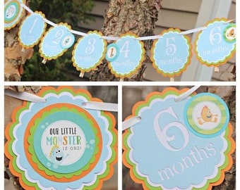 Little Monster Birthday Party Decorations.  Birthday Banner.  12 Month Photo Memory Banner/1st Birthday/First Birthday.  Our Little Monster.