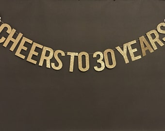 Cheers to 30 Years, 30th birthday party banner, Birthday Party Decor, 30th Birthday Party garland