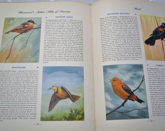 Vintage Hammonds Nature Atlas of America 1952 Wildlife Maps Hardcover Collectible Vintage Book PanchosPorch