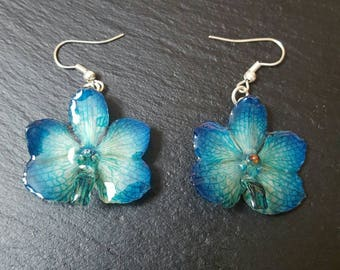 Real orchid earrings - real flower earrings - blue orchid - green orchid - Vanda orchid - preserved orchid - preserved flower